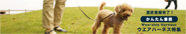 ラフィンドッグ 簡単に着脱できて愛犬にやさしいウエアハーネス 意匠登録済み