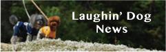 Laughin' Dog News ラフィンドッグのブログ