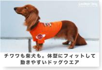 ラフィンドッグ 愛犬の体型にフィットするドッグウエア